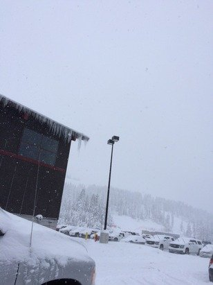 It's dumping out here. Too much powder for us amateurs!