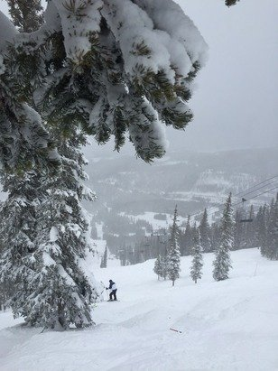 Last run of the day & still dumping. Gnarly day on the MJ.