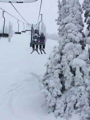 Excellent powder day for Christmas at Targhee!!   Wide open terrain, great snow, no lines - limited only by legs!
