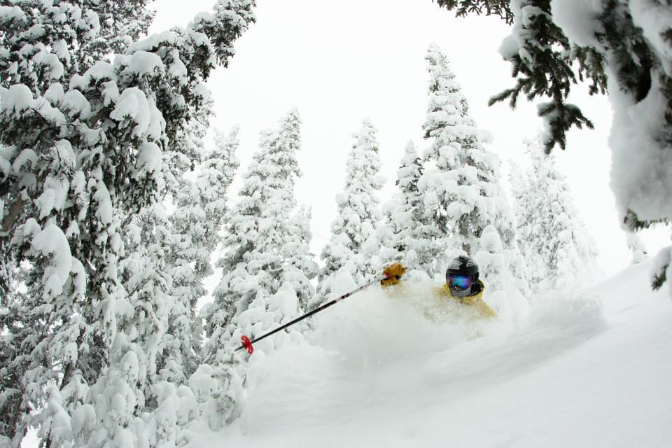 The trees are deep at Aspen/Snowmass. - ©Zach Luchs / Aspen Snowmass