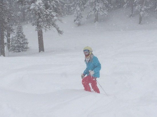 The pow is fabulous. Yesterday was fine but today the bowls were epic and filled with fresh pow.