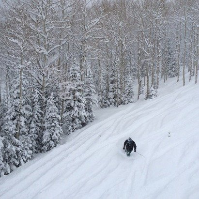 Knee deep powder today! So much snow...awesome day! No lines...tricky perfect!!!