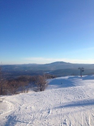 Beautiful Bluebird Day!