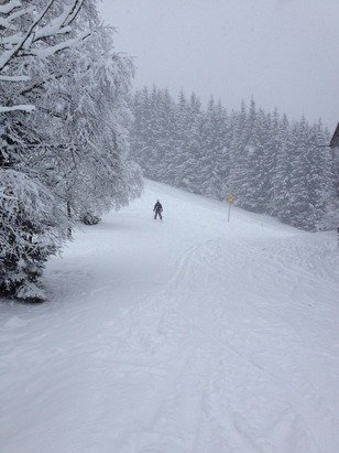 Fresh powder in Zell am See!