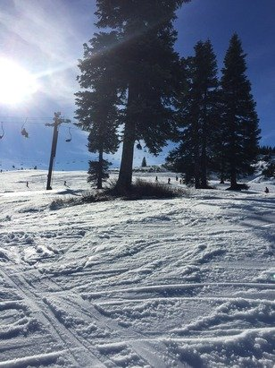 Spring skiing but clear and warm. Perfect for new skiers. Don't bring your best skis.