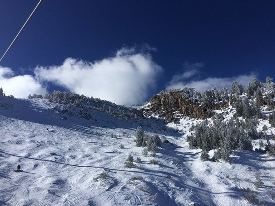 Going to jackson prez day. Mammoth locale and we've no snow. Crowded on prez day in Jackson? More snow than mammoth.  Any tips appreciated.  Photo - no snow Mammoth 1/31. But everyday on skis is a good day.