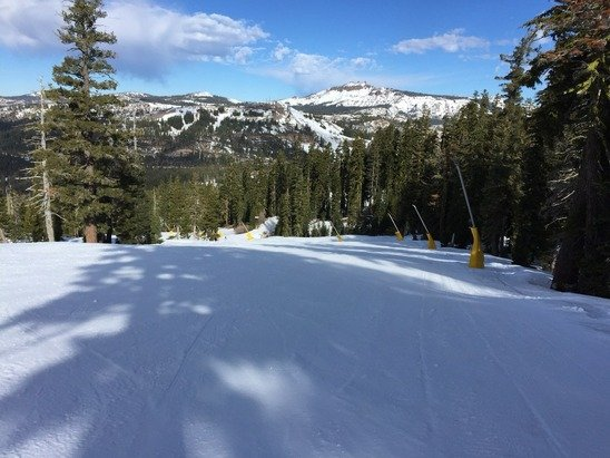 Groomers are fine. Not icy. Base lower mt -5 inches. Haven't hit the upper mt yet.