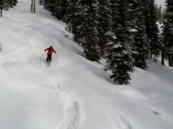 Fresh 10cm @bigwhite & more falling fantastic gift 4 the weekend on a 200cm base