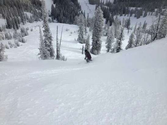 so much untracked powder today