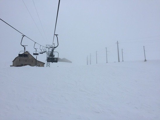 Great Snow today. Poor visibility.