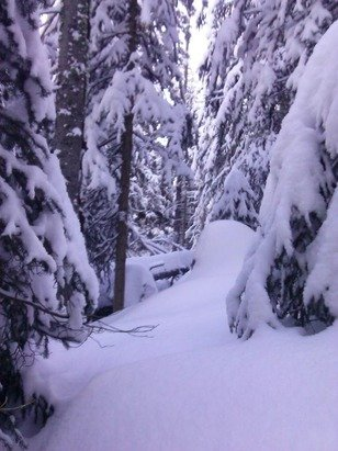 Customer at Skier's Edge today said 14