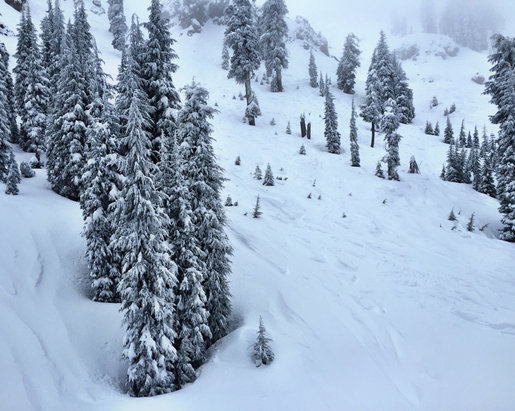 Definitely fresh snow to be found off piste.  Groomers got tracked out pretty bad by 11am though -- essentially making heavy piles of snow everywhere. But, overall great day!