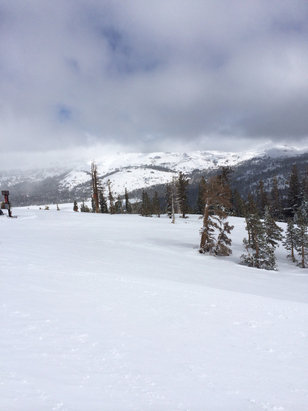 Kirkwood - Powder all day. Not very crowded but windy at top.