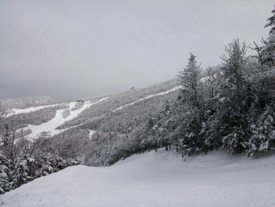 Cannon Mountain - some icey spots, but what a resort. first time here and im in love. Tons of knee deep pow in the trees. Crowded, but lift lines move pretty fast. 5 star resort.