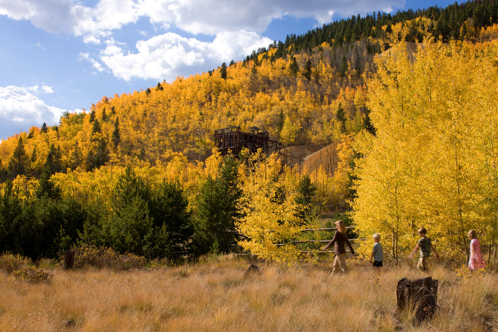 Fall colors in Breckenridge, CO. Image by Jeff Scroggins.