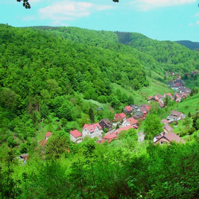 Der Harzer-Hexen-Steig