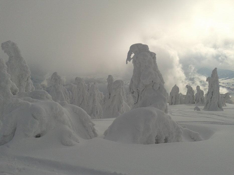 Ski Park Kubínska ho?a - ©mmotycak @ Skiinfo Lounge
