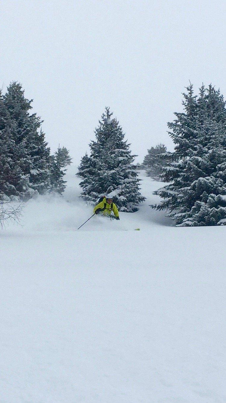Halvor Snarvold fant deilig snø i skogen i Verbier. - ©Andreas L. Ulvær