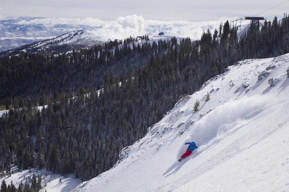 PCMR snowboarder harvesting some fresh. - ©Park City Mountain Resort
