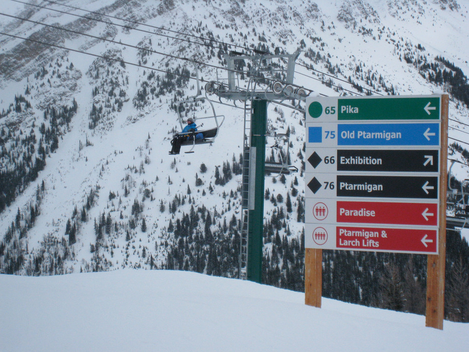 Lake Louise has green runs from all chairlifts. Photo by Becky Lomax.