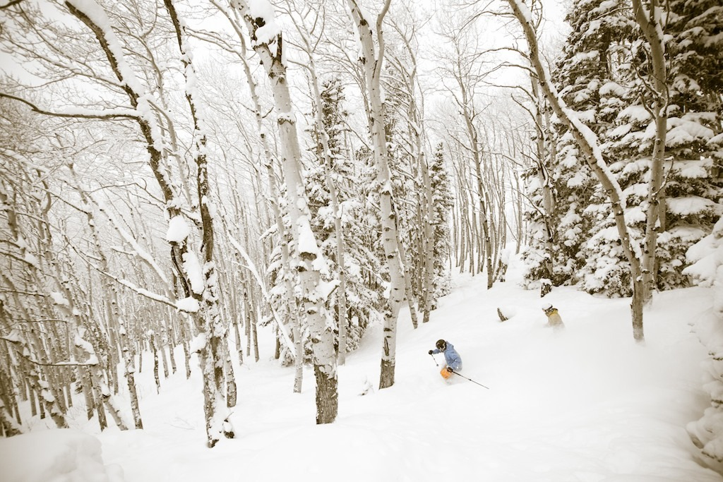 MIke Maroney and Caroline Lalive skiing aspen glades off of the Pony Express Lift.