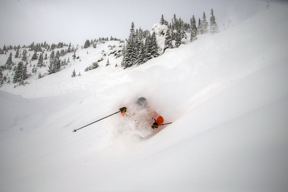 Powder in Eagle East at Marmot Basin.