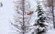 Sunshine Village on March 5, 2012. Photo by Sean Hanna courtesy of Ski Big Three