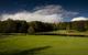 Golf course at Boyne Highlands Resort