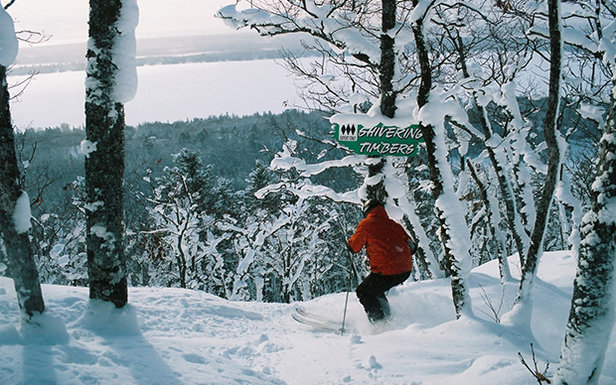 Powder glade skiing at Mount Bohemia - ©Michigan Snowsports Industries Association