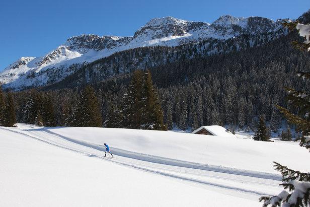 3 Alochet - Passo San Pellegrino, sci di Fondo - ©Val di Fassa - N. Angeli