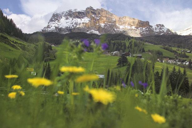 Alta Badia bietet weitläufige Almen und Blumenwiesen für sommerliche Wanderungen vor der Kulisse am berühmten Sellastock