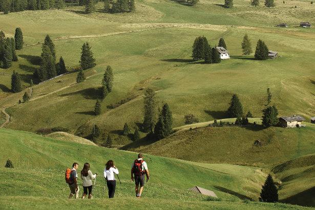 Seiser Alm: Wandern über die größte Hochalm Europas mit spektakulärem 360-Grad-Bergpanorama