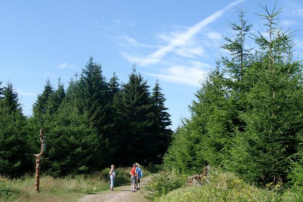 Wandertipp der Woche: Zur Hohen Möst in Oberhof
