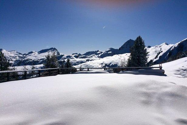 Alpe Cermis, Cavalese 26.02.16 - ©Alpe Cermis, Cavalese Facebook