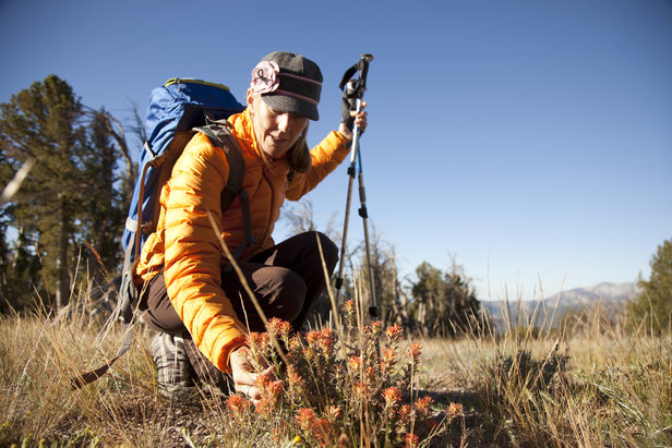5 Mammoth Hikes to Stop & Smell the Flowers - ©Mammoth Lakes Tourism