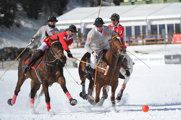 Cortina Polo