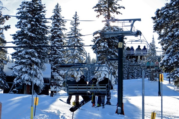 Demos, Dogs and Discounted Tickets at Brighton Resort