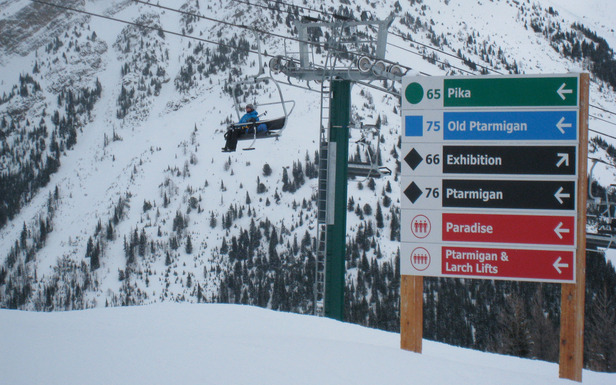 Lake Louise offers runs for all abilities. Photo by Becky Lomax. - ©Becky Lomax