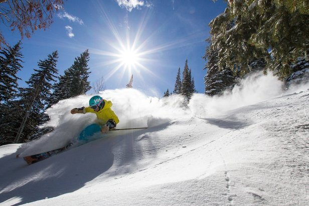 2016/2017 Early Bird Season Pass Prices: Rocky Mountains - ©Liam Doran