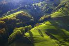 Blick auf die steilen Talhänge im Münstertal