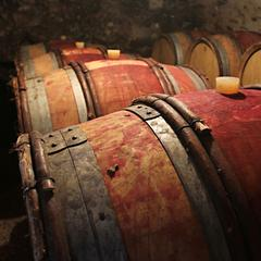 Vignoble de la Combe de Savoie. Cave de Marc Vullien à Fréterive. - ©© Savoie Mont Blanc / Ribot