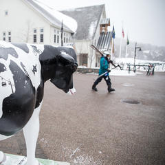 Skier mooooooving along to a great day at Sugarbush.