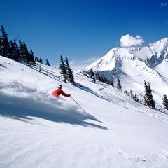 Snowbird, Utah skier