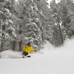 Storm Gallery: Taos Ski Valley Feb. 2015 - ©Taos Ski Valley