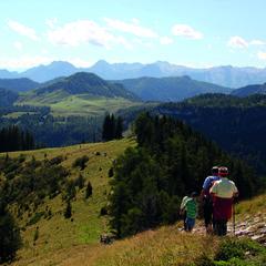 Wandertipp der Woche: Moosbergrunde auf der Postalm im Salzkammergut - ©Salzkammergut Tourismus-Marketing GmbH