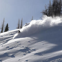 Dry blower powder  - ©Josh Cooley