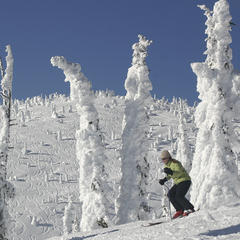 Whitefish snowghosts (Brian Schott)