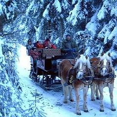 Pferdekutschenfahrt - ©Urlaubsregion Defereggental