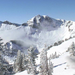 A mid-November webcam shot shows the snowpack in Cody Bowl at Jackson Hole. Photo courtesy of JHMR webcam.