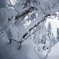 Tegefjäll, Sweden